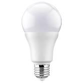 Bec LED 13W, E27, A65